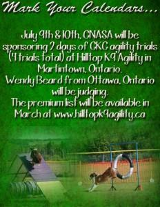 cnasa hilltop agility trial
