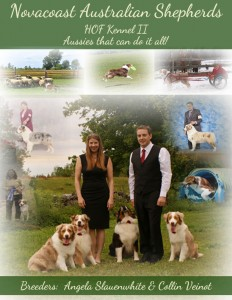 HOF kennel II ad